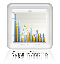 report service data icon
